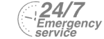 24/7 Emergency Service Pest Control in Hither Green, SE13. Call Now! 020 8166 9746