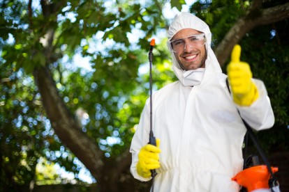 Pest Control in Hither Green, SE13. Call Now 020 8166 9746