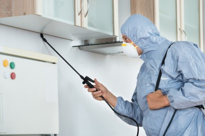 Home Pest Control, Pest Control in Hither Green, SE13. Call Now 020 8166 9746
